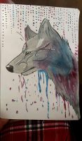 Watercolor wolf by Kosekii