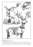 Encyclopedia - Deer (2) by Celtilia