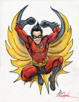 Robin Tim Drake by Mortal-Mirror