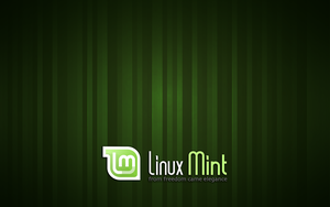 Stripes Linux Mint GDM Wallpaper by Alucryd
