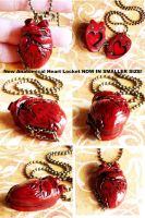 NEW Anatomical Heart locket sm by wickedgems