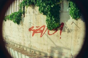 tag by oneson