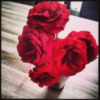 Red roses/flowers by MysteriouSxDreameR