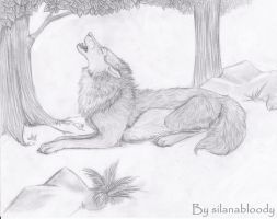 Wolf by silanabloody