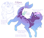 Calysco Reference 2016 by Kainaa