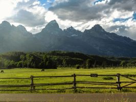 Pasture of Paradice by KRHPhotography