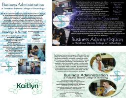 Business Administration Poster by fartoolate