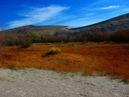 Bruneau Dunes 4 -- Nov 2007 by pricecw-stock