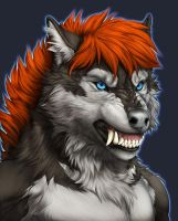 Stormwxwolf-collab commission- by RogueLiger