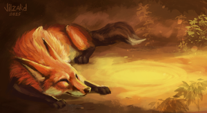 FOX by Vilzard