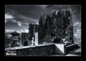 La Alcazaba by Morillas