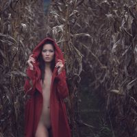 Autumn Silence by artofdan70