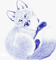 Red fox, vulpes vulpes by mysteriouswhitewolf
