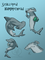 SHARK WEEK 2014 #1- Scalloped Hammerhead by comixqueen