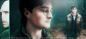 Dw-Harry and Voldemort by GABY-MIX