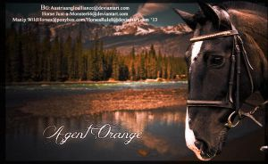 Agent Orange by HorsesRule8