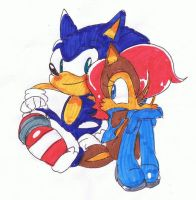 .::Sonic and Sally::. by Umbra-Flower