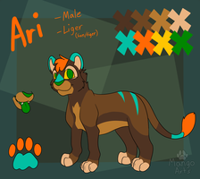 Ari Ref Sheet - March 2014 by Mangoswirls