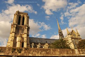 Notre Dame by Simina31