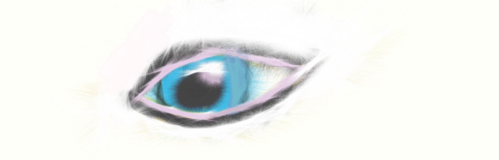 eye by witchhunter1990