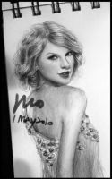 Taylor Swift 2 by mcglory