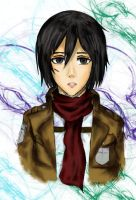 Mikasa Attack on Titan by Zier2 by PichLechuga
