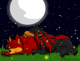 Commission(Request)-Red and Laila under the stars by ShadailaLover712