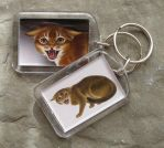 Key Ring - Hissing cat by demiveemon