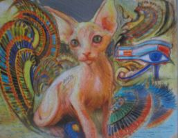 psychedelic cat by AnnarXy