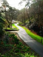 Boscombe Gardens by paters87