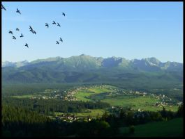 one day I saw the Tatras - III by Wilithin