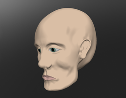 the head sculptris raw image 3 by Technohippy
