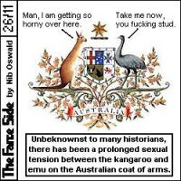 Coat Of Arms Sexual Tension by niboswald