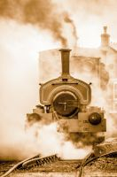 Chasewater Steam 2 by Grunvald