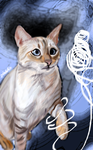 Bengal White Cat by fullcolour-canvas