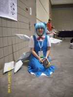 Cirno Cosplay 2 by confuzed-anime-fan