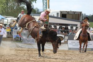Taupo Rodeo 104 by Sooty-Bunnie