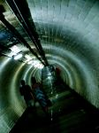 Down the Tunnel. by Charteris