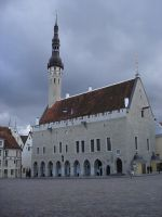 Estonian Town Hall by racehorse87-stock