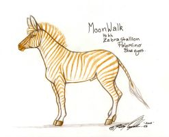 Palomino Zebra by moonfeather