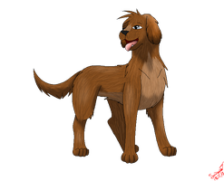 .::Malte the Spaniel::. by pokemonlover5673