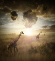 Photo manipulation with giraffes by Alena-48