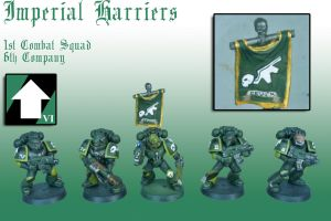 Imperial Harriers 1st Combat Squad - 6th Company by Pip-Faz