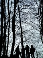 The Neighbourhood and a forest by Mensaman