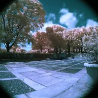 Courtyard - IR by beanhugger