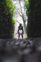 Alice in Madness Returns by NadiaSK