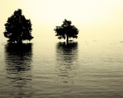 Lake Marion by nathanieljc