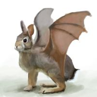 rabbit bat by ryan-wears-a-hat