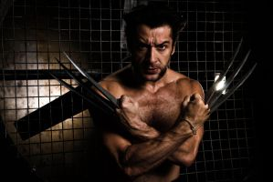 Wolverine. Be ready by IcyIrena