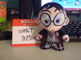 Munny: Harry Potter -front- by ScarecrowArtist